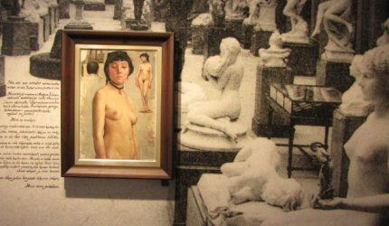Installaatiokuva Serlachius-museoiden näyttelystä Malli ja hullu kuvailija.